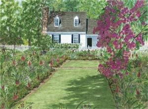 69.  Williamsburg - Taliaferro-Cole Summer Garden by NH