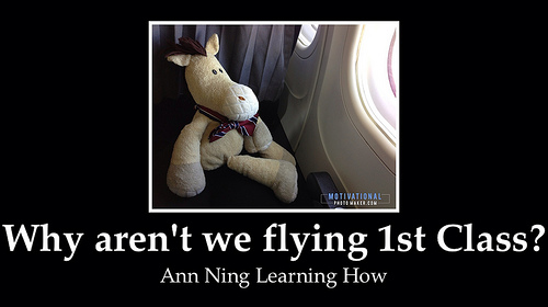Ed re. Air Travel || Ann Ning Learning How