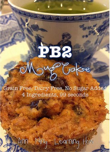 PB2 Mug Cake || Grain & Dairy Free, NSA || Ann Ning Learning How