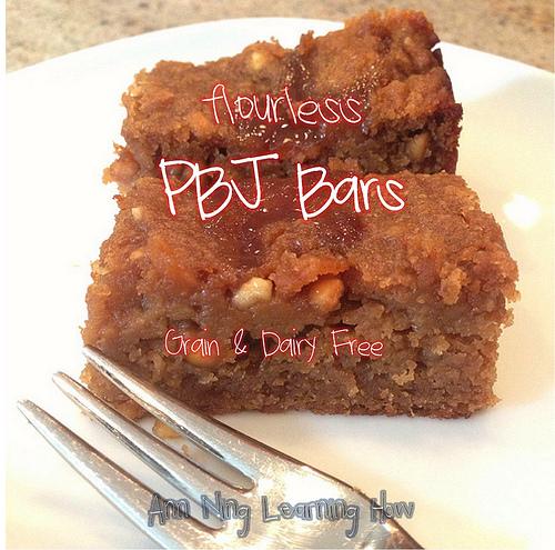 Flourless PBJ Bars |Grain Free, Dairy Free | Ann Ning Learning How