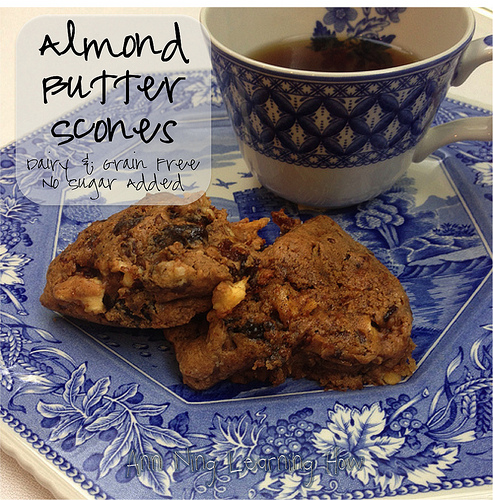 Almond Butter Scones (with dried fruit; flourless) | Grain and Dairy Free, NSA |Ann Ning Learning How