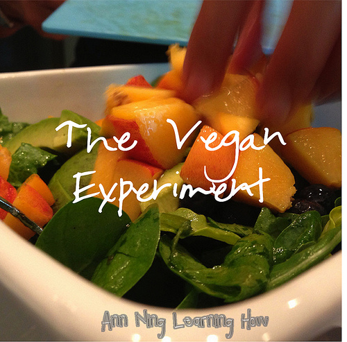 The Vegan Experiment | Ann Ning Learning How