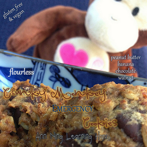 Chunky Monkey Emergency Cookies |Flourless, GF, Vegan | Ann Ning Learning How