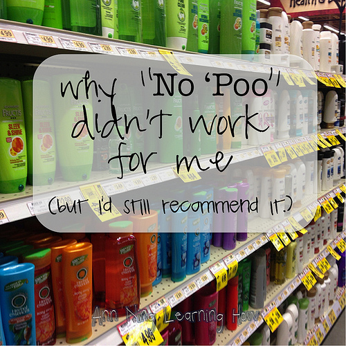 My Attempt at No 'Poo | Ann Ning Learning How