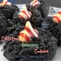307.  Christmas Emergency Cookies