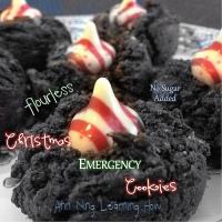 307.  Christmas Emergency Cookies