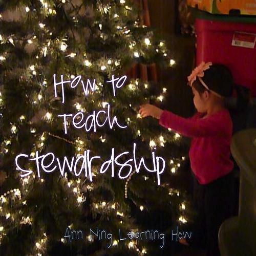 How to Teach Stewardship | Ann Ning Learning How