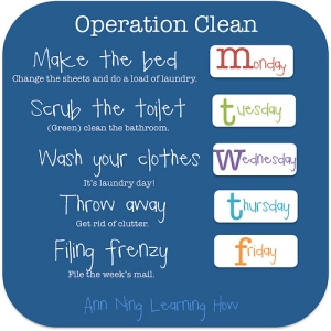 328.  Operation Clean