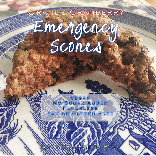 Emergency Scones | Vegan, Flourless, NSA | Ann Ning Learning How