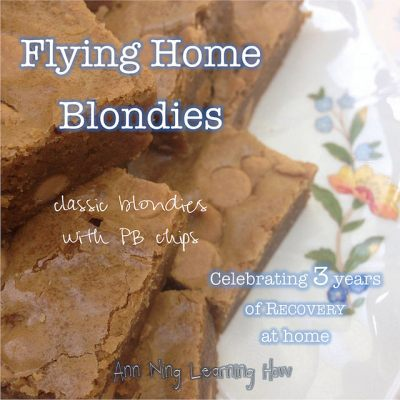 Flying Home Blondies | w PB Chips | Ann Ning Learning How