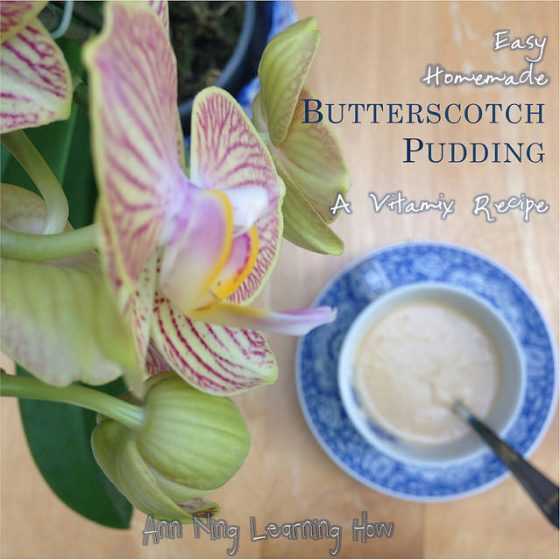 379. Easy Homemade Butterscotch Pudding